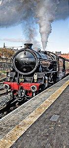 Fundo Fotografico - Locomotiva Cena 8 ( 1,50 x 3 metros)