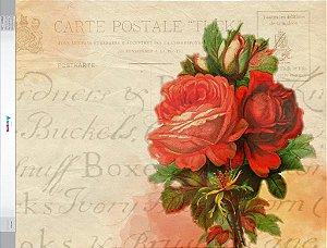 Fundo Fotografico - Cartão Postal (1,60 x 2,10 metros)