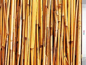 Fundo Fotografico - Bambu Amarelo (1,50 x 2,10 metros)