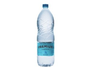 Agua sem Gás Premium 510 ml Lindoya