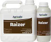 Raizer-Enraizador (1 Litro)