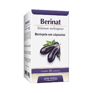 Berinat (Berinjela) ARTE NATIVA 500mg 30 Cápsulas
