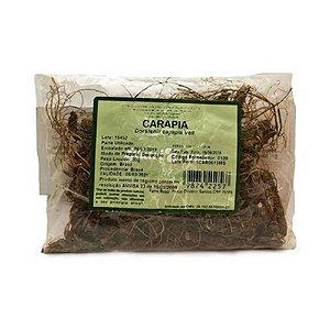Carapia (Dorstenia cayapia) Raiz NUTRI ERVAS 30g