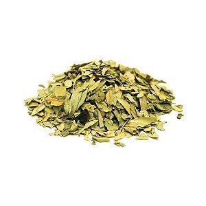 Sene (Cassia angustifolia) Folhas DV