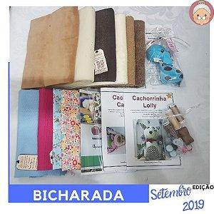 FABRICBOXdonaFlor Bicharada - Setembro 2019