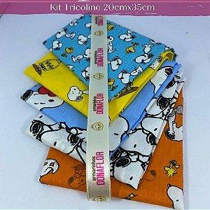 Kit Tricoline 5Tecidos Snoopy 100% Algodão - Medida 20cm x 35cm