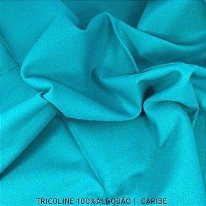 Tricoline Liso 100% Algodão Caribe 50cm x 1,50m