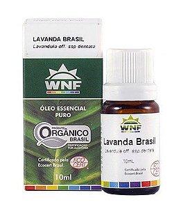 Óleo Essencial Lavanda Brasil 10ml - WNF