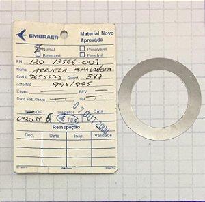 ARRUELA - 120-13566-007