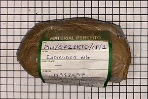 INDICADOR NG - PW/0721KTD/CP/1