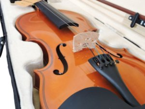 Violino Barth Violin NT Bright 4/4 - com Estojo + Arco + Breu - Completo - CR