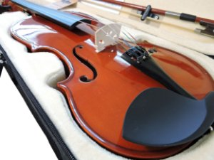 Violino Barth Violin 4/4  - Solid Wood + Estojo Cr + Arco + Breu - Completo!