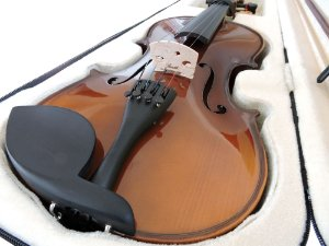 Violino Barth Violin 4/4 Old Bright - Solid Wood + Estojo Cr + Arco + Breu