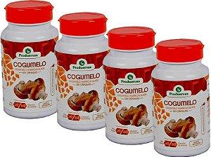 Cogumelo 240 Cápsulas 500 Mg Agaricus Blazei Do Sol Oferta