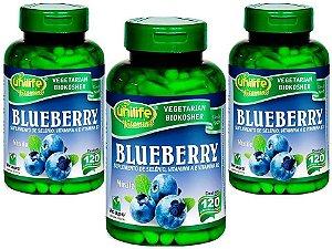 Blueberry Rico em Antioxidantes 360 capsulas 550 mg Benefícios