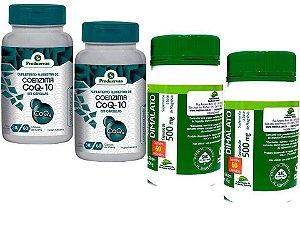 Coenzima Q10 Co Ubiquinona 120 Capsulas + Magnésio Dimalato 120
