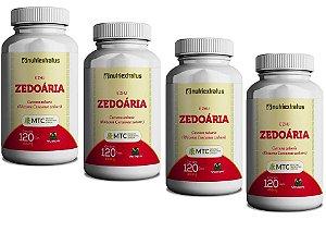 Curcuma Zedoária Curcumina 480 Capsulas 400 Mg Saúde 100%