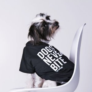 Camiseta Dogs Never Bite