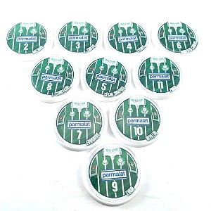 10 Botões - Acrílico Cristal 49mm - Palmeiras 1994