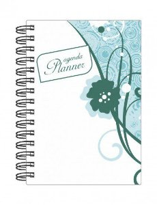 Agenda Permanente Planner  Planejamento Anual Mensal