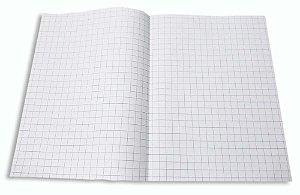 200 Folhas De Papel Almaço Quadriculado 20x27,5 Dobrado A4