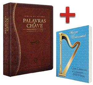 Bíblia De Estudo Palavras Chave Luxo Hebraico Grego + Harpa