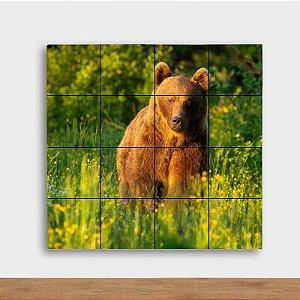Painel Decorativo Urso no Sol - Quadrado