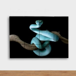 Painel Decorativo Cobra Azul