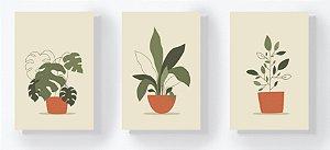 Trio Retangular Azulejos - Plantas no Vaso