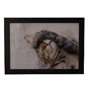 Quadro Decorativo Gato #3