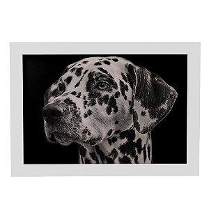 Quadro Decorativo Cachorro Dalmata