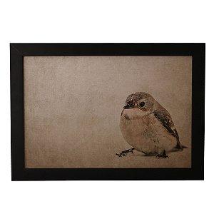 Quadro Decorativo Vintage Pássaro