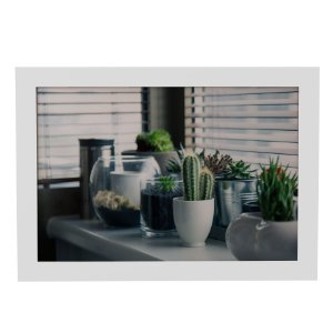 Quadro Decorativo Vasinhos de Plantas