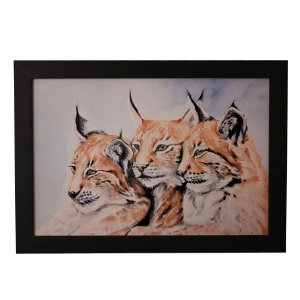 Quadro Decorativo Gatos Selvagens Aquarela
