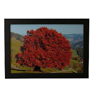 Quadro Decorativo Árvore Vermelha