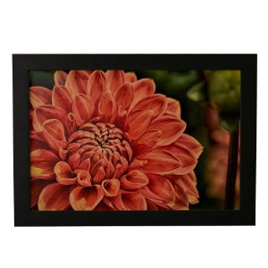 Quadro Decorativo Flor Dália