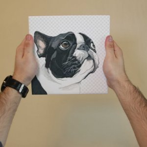 Azulejo Decorativo Pug