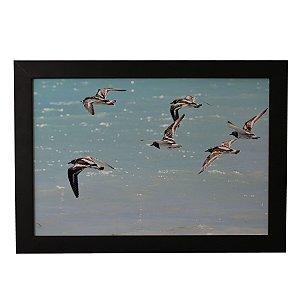 Quadro Decorativo Aves e Mar Azul