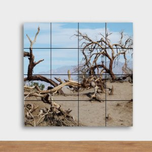 Painel Decorativo Árvores Secas - Quadrado