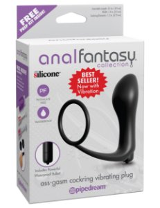 Plug Anal Vibratório com Anel Peniano Ass-Gasm Anal Fantasy Collection