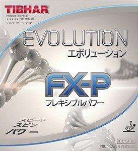 Borracha Thibar - Evolution FX-P