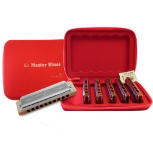 Kit de Harmônicas Hering Master Blues 90120 Profissional