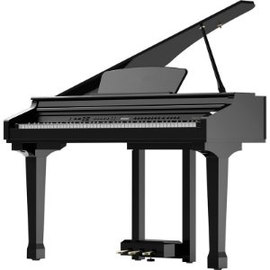 Piano Digital Ringway Mini Cauda Gdp1020 88 Teclas Preto