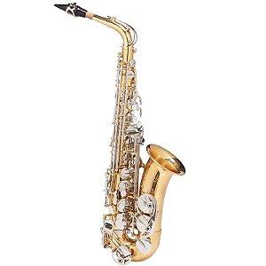 Saxofone Alto Michael Dourado E Niquelado Wasm49 Em Eb Com Case Mochila