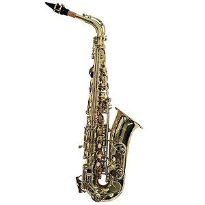 Saxofone Alto Shelter Sft6430l Laqueado Em Eb Com Estojo