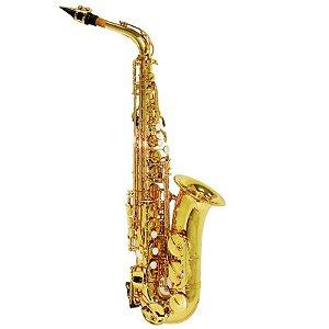 Saxofone Alto Shelter Sgft6430l Laqueado Dourado Em Eb Com Estojo