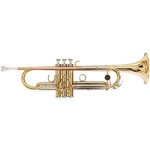 Trompete Michael Laqueado Wtrm66 Com Case