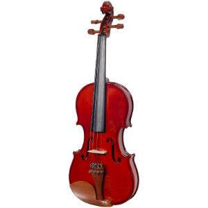 VIOLINO MICHAEL VNM146 4/4 BOXWOOD SÉRIES COM CASE