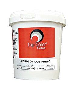 Tinta à Base de Água Cobertura Top Color