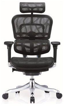 001-Cadeira Ergohuman